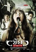 Zorla Giren (2010) afişi
