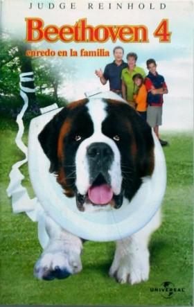 Afacan Köpek Beethoven 4