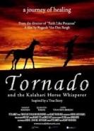 Tornado ve Atlara Fısıldayan Adam