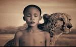 Hayvan Sevgisi İle İlgili Filmler