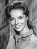 Joan Freeman profil resmi