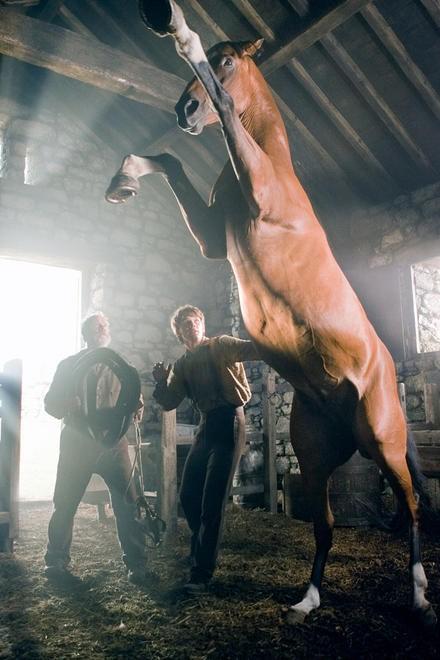 War Horse 0 - Sava� At� (War Horse)