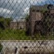 Asylum (ıı) Resimleri