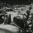 Call Of The Yukon Resimleri
