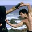 Dövüş Sanatı Resimleri