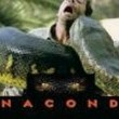 Anaconda Resimleri
