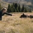 Clara and the Secret of the Bears Resimleri