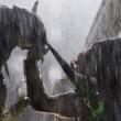 Alien Predator'e Karşı 2 Resimleri