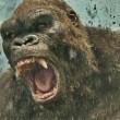Kong: Kafatası Adası Resimleri