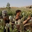 Afyon Savaşı Resimleri