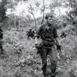The 317th Platoon Resimleri