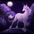 The Last Unicorn Resimleri