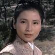 Zhong Kui Niang Zi Resimleri
