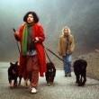 The Dogwalker Resimleri