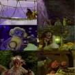 The Argon Quest Resimleri