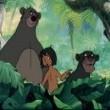Orman Çocuğu Resimleri