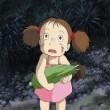 Komşum Totoro Resimleri