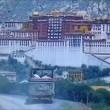 A Kid From Tibet Resimleri