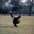 This ıs Kung Fu Resimleri
