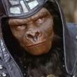 Maymunlar Cehennemi Resimleri