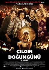 Çılgın Doğumgünü (2013) afişi