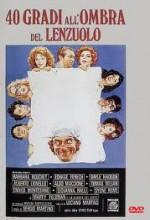 40 Gradi All'ombra Del Lenzuolo (1976) afişi