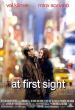 İlk Görüşte Aşk (1999) afişi