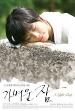 A Light Sleep (2008) afişi