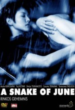 A Snake Of June (2002) afişi