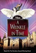 A Wrinkle In Time (2003) afişi
