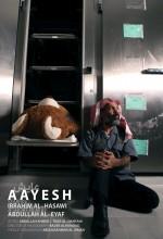 Aayesh (2010) afişi