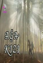 Ağa Kızı (2004) afişi
