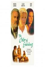 Akşamın Rengi (1994) afişi