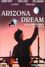 Arizona Rüyası (1993) afişi