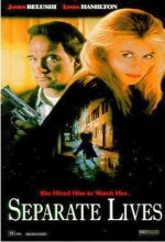 Ayrı Yaşamlar (1995) afişi