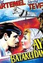 Aysel Bataklı Damın Kızı (1935) afişi