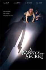 A Nanny's Secret (2009) afişi