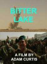 Acı Göl (2015) afişi