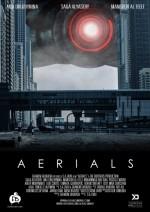 Aerials (2016) afişi