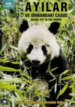 Ayılar ve Ormandaki Casus (2004) afişi