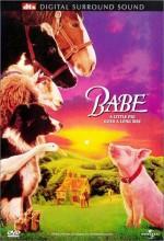 Babe (1995) afişi