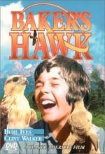 Baker's Hawk (1976) afişi