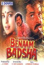Benaam Badsha (1991) afişi