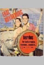 Berduş (ı) (1969) afişi