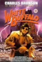 Beyaz Bufalo (1977) afişi