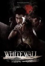 Beyaz Duvar (2010) afişi