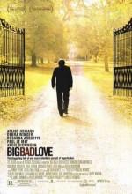 Big Bad Love (2001) afişi
