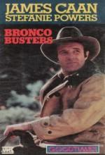 Bronco Busters (1952) afişi
