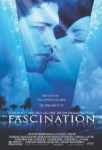 Fascination (ıı)