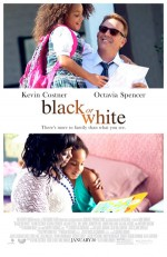 Black or White (2014) afişi